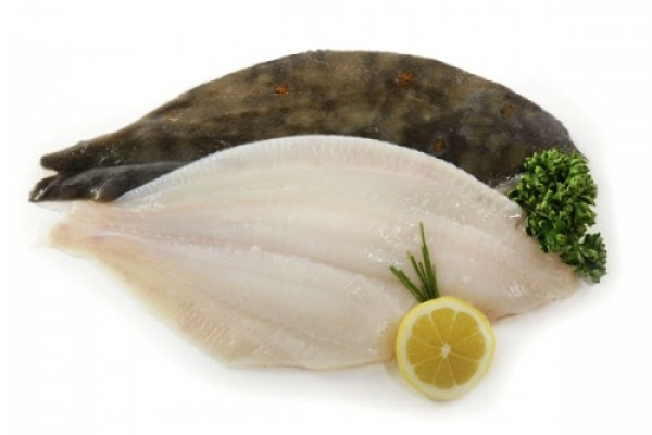 Plaice fillet
