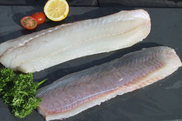 Saithe fillets